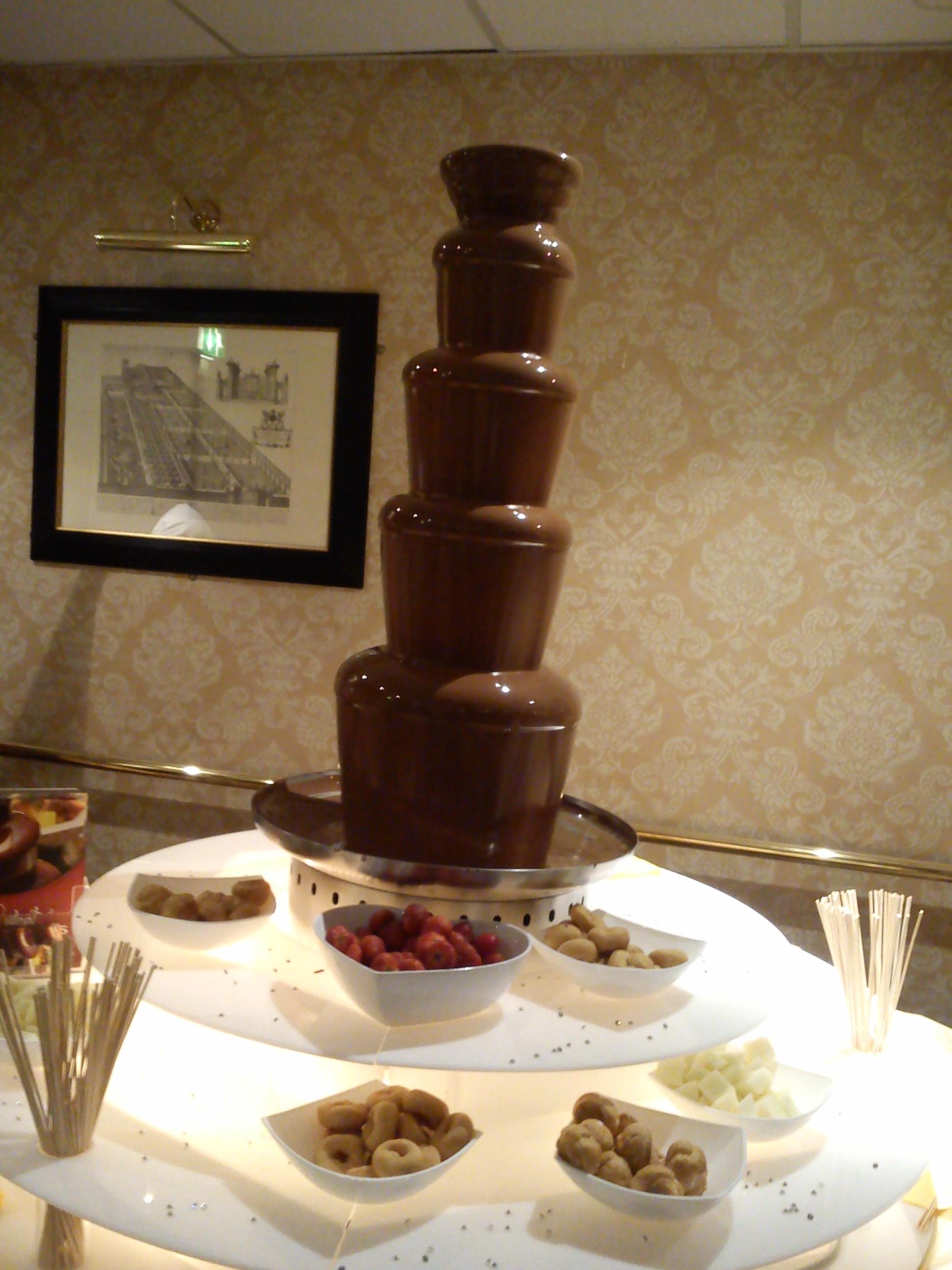 maya ellis chocolate fountain